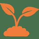 OurVision_Orange